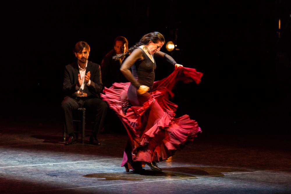 Berja conmemora el Día Internacional del Flamenco con una clase magistral gratuita