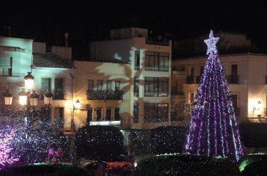 Berja en navidad