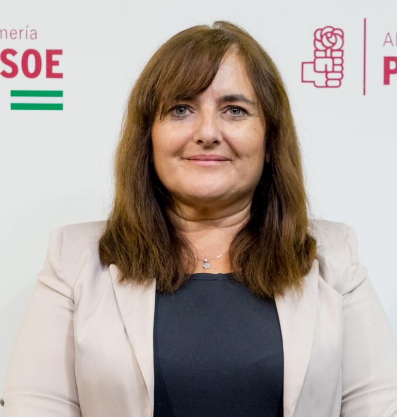 El PSOE de Berja desconfía de los ingresos y discrepa de los gastos del presupuesto del Ayuntamiento para 2019